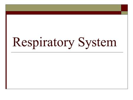 Respiratory System. Discover Activity Page 112 Respiratory System Gases  What do you already know about the Function of Respiratory System?  What gases.