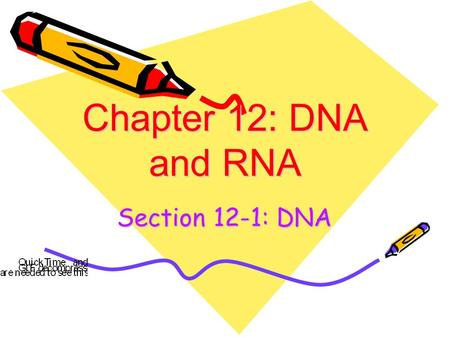 Chapter 12: DNA and RNA Section 12-1: DNA. Interest Grabber Section 12-1 1. On a sheet of paper, write the word cats. List the letters or units that make.