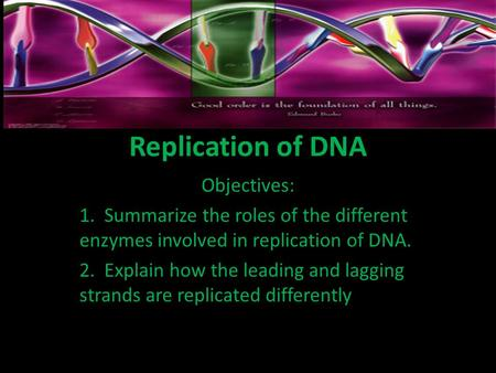 Replication of DNA Objectives: 1. Summarize the roles of the different enzymes involved in replication of DNA. 2. Explain how the leading and lagging strands.