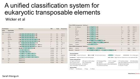 A unified classification system for eukaryotic transposable elements