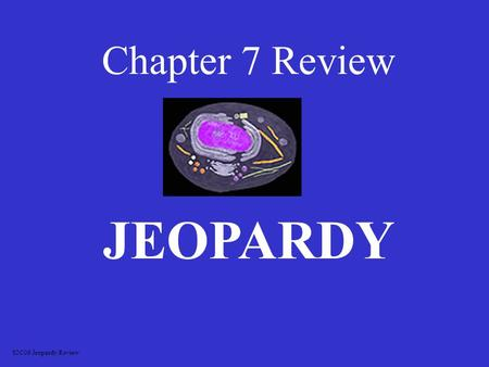 Chapter 7 Review JEOPARDY S2C06 Jeopardy Review OrganellesVocabulary Cell Differences Picture ID Other 100 200 300 400 500.