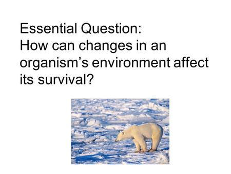 Essential Question: How can changes in an organism's environment affect its survival?