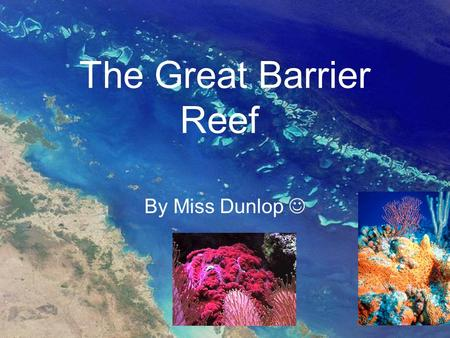 The Great Barrier Reef By Miss Dunlop. Great Barrier Reef Overview Located in the Coral Sea on the coast of Queensland (NE Australia) Largest Reef System.