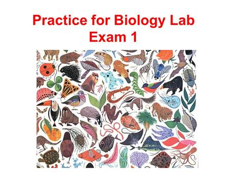 Practice for Biology Lab Exam 1. Identify the Structure Below. What purpose does it serve?
