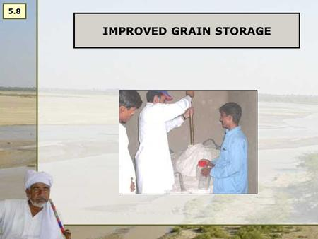 IMPROVED GRAIN STORAGE 5.8. Statement: Improved storage is important: storage losses can be as high as 6-20% Main reasons: -Insects/ pests -Seeds stored.