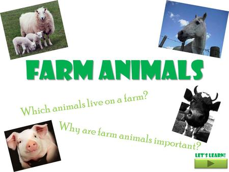 Farm Animals Which animals live on a farm? Why are farm animals important? Let's learn!