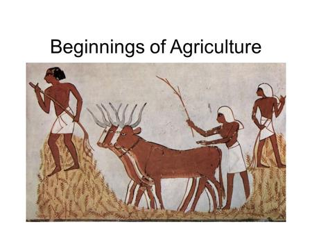 Beginnings of Agriculture