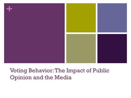 + Voting Behavior: The Impact of Public Opinion and the Media.