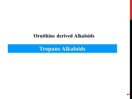 Ornithine derived Alkaloids