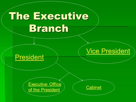 The Executive Branch President Vice President Executive Office of the President Cabinet.