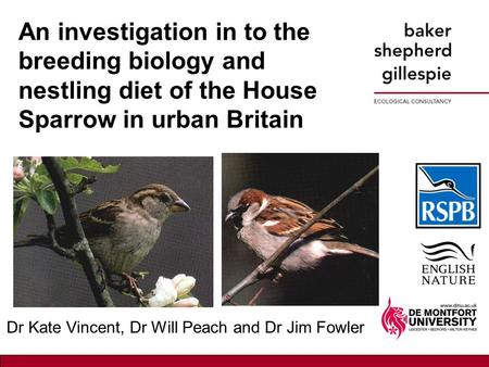 An investigation in to the breeding biology and nestling diet of the House Sparrow in urban Britain Dr Kate Vincent, Dr Will Peach and Dr Jim Fowler.