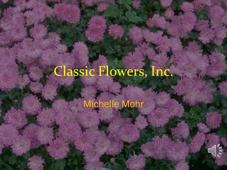 Classic Flowers, Inc. Michelle Mohr Our Products Potted Flowers  Three sizes (small, medium, large)  Two types of pots (regular and premium) Bouquets.