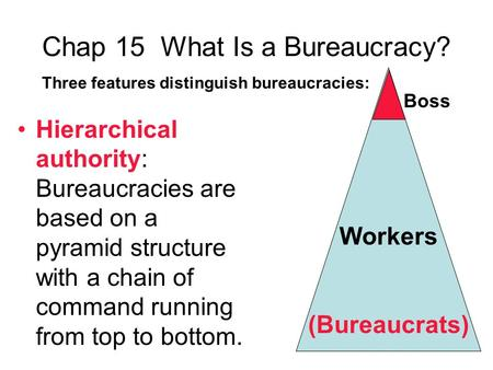 Chap 15 What Is a Bureaucracy?