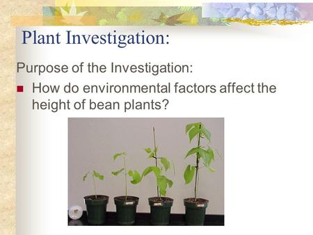 environmental factors for plant growth Environmental factors affect range plant growth the three most ecologically  important environmental factors affecting rangeland plant growth are light,.