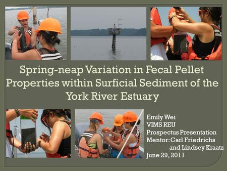 Spring-neap Variation in Fecal Pellet Properties within Surficial Sediment of the York River Estuary Emily Wei VIMS REU Prospectus Presentation Mentor: