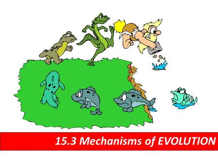 15.3 Mechanisms of EVOLUTION. The formation of a new species 15.3 Speciation.