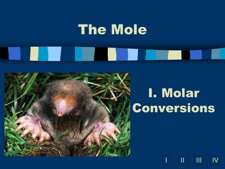 IIIIIIIV The Mole I. Molar Conversions What is the Mole? A counting number (like a dozen or a pair) Avogadro's number 6.02  10 23 1 mole = 6.02  10.