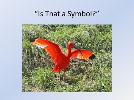 """Is That a Symbol?"". In Simple Terms, A Symbol is… A person, place, thing or event that stands for itself and something beyond itself. Something you can."