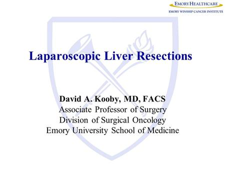 Laparoscopic Liver Resections David A. Kooby, MD, FACS Associate Professor of Surgery Division of Surgical Oncology Emory University School of Medicine.