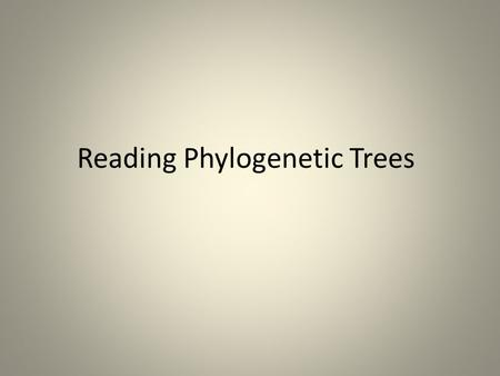 Reading Phylogenetic Trees. Reading phylogenetic trees: A quick review (Adapted from evolution.berkeley.edu) A phylogeny, or evolutionary tree, represents.