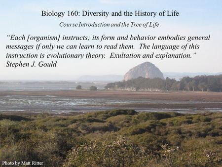 "Course Introduction and the Tree of Life Biology 160: Diversity and the History of Life Photo by Matt Ritter ""Each [organism] instructs; its form and behavior."