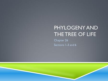 PHYLOGENY AND THE TREE OF LIFE Chapter 26 Sections 1-3 and 6.