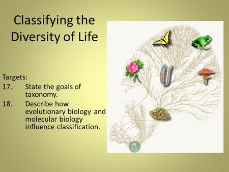 Classifying the Diversity of Life Targets: 17. State the goals of taxonomy. 18. Describe how evolutionary biology and molecular biology influence classification.