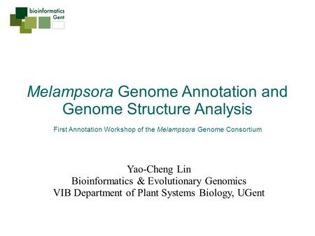 Melampsora Genome Annotation and Genome Structure Analysis First Annotation Workshop of the Melampsora Genome Consortium Yao-Cheng Lin Bioinformatics &