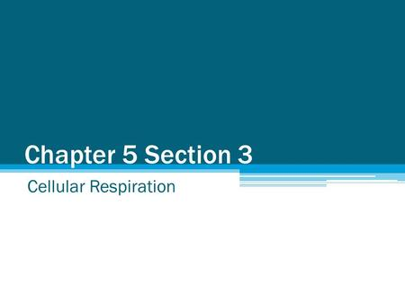Chapter 5 Section 3 Cellular Respiration. How do we get energy? We all need energy to function and we get this energy from the food we eat. Cellular respiration.