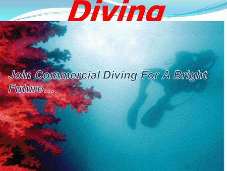 Commercial Diving. 1. Commercial diving will expand your career achievements 2.Gain experience of work all over the world 3.Job opportunity within.