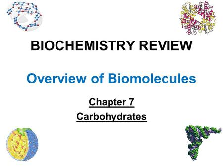 BIOCHEMISTRY REVIEW Overview of Biomolecules Chapter 7 Carbohydrates.