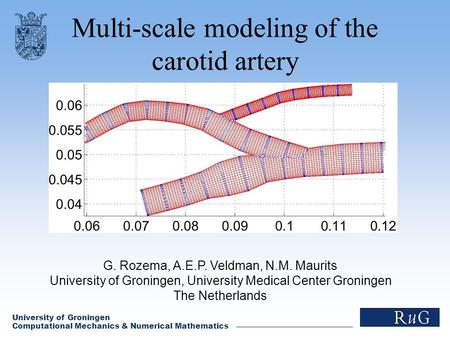 Multi-scale modeling of the carotid artery