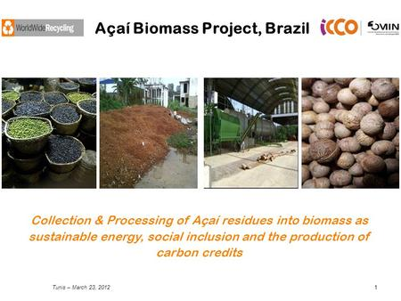 Tunis – March 23, 20121 Açaí Biomass Project, Brazil Collection & Processing of Açaí residues into biomass as sustainable energy, social inclusion and.