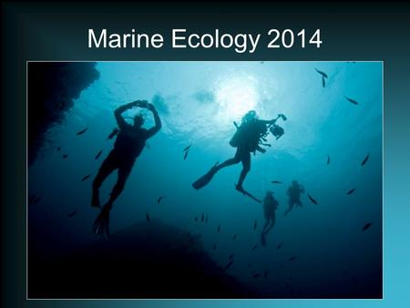 Marine Ecology 2014. Welcome Exploring the underwater world is both fun and serious. Scuba diving is enjoyed by millions of people all over the world.