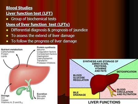 Blood Studies Liver function test (LFT) Group of biochemical tests Group of biochemical tests Uses of liver function test (LFTs) Differential diagnosis.