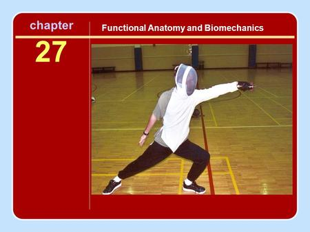Functional Anatomy and Biomechanics