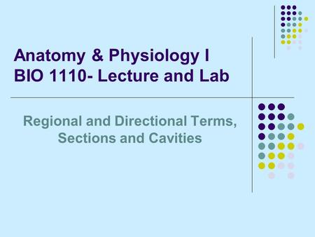 Anatomy & Physiology I BIO 1110- Lecture and Lab Regional and Directional Terms, Sections and Cavities.