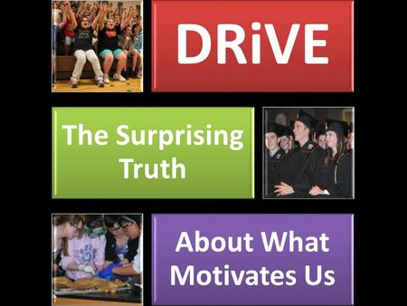 DRiVE The Surprising Truth About What Motivates Us.