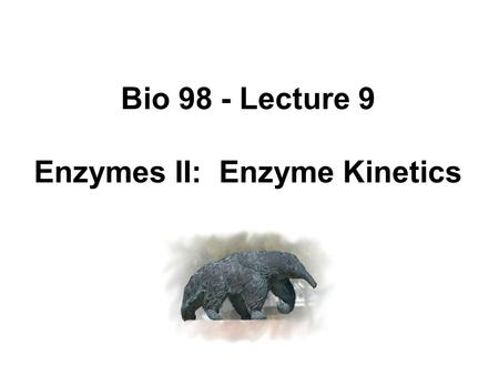 Enzymes II: Enzyme Kinetics