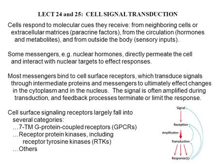 LECT 24 and 25: CELL SIGNAL TRANSDUCTION Cells respond to molecular cues they receive: from neighboring cells or extracellular matrices (paracrine factors),