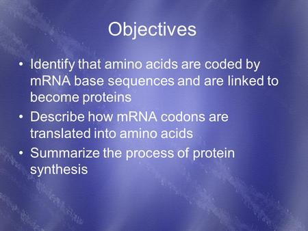 Objectives Identify that amino acids are coded by mRNA base sequences and are linked to become proteins Describe how mRNA codons are translated into amino.