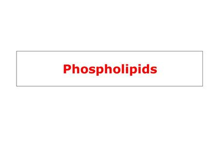 Phospholipids. Phospholipids & Glycolipids Phospholipids (PL) alcohol phosphodiester bridge PL are composed of an alcohol (ethanolamine, serine, choline,