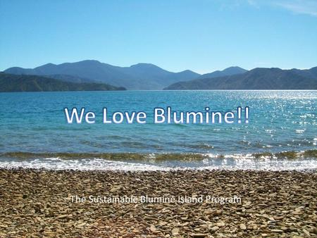 The Sustainable Blumine Island Program. Strengths Isolated Pest Free Variety of forest Established tracks Wide range of native birds Ability to enhance.