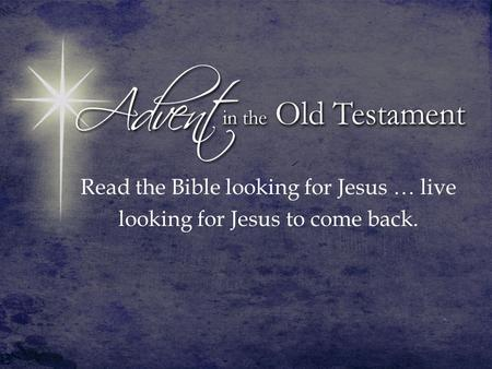Read the Bible looking for Jesus … live looking for Jesus to come back.
