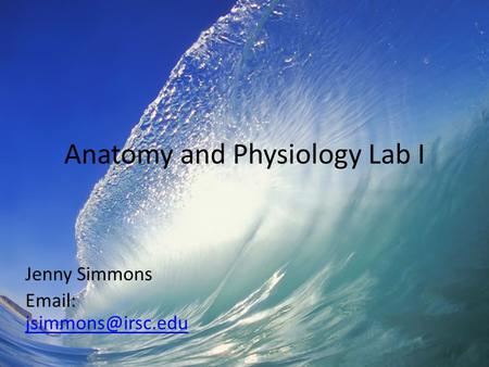 Anatomy and Physiology Lab I Jenny Simmons
