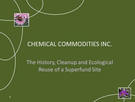 CHEMICAL COMMODITIES INC. The History, Cleanup and Ecological Reuse of a Superfund Site 1.