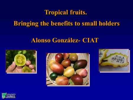 Alonso González- CIAT Tropical fruits. Bringing the benefits to small holders Tropical fruits. Bringing the benefits to small holders.