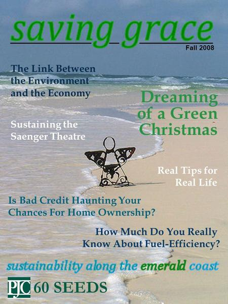 Fall 2008 The Link Between the <strong>Environment</strong> and the Economy Is Bad Credit Haunting Your Chances For Home Ownership? Dreaming of a Green Christmas How Much.