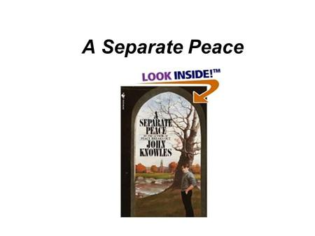 A Separate Peace. Online resource  ary/pdf/separate_peace.pdfhttp://www.glencoe.com/sec/literature/litlibr.
