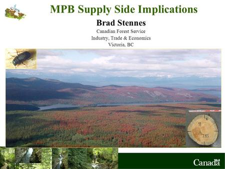 MPB Supply Side Implications Brad Stennes Canadian Forest Service Industry, Trade & Economics Victoria, BC.